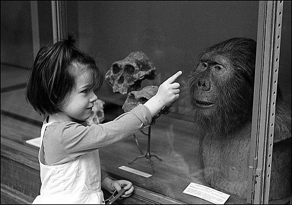 C'est quoi papa ? C'est un singe ?