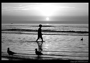Le petit garçon et la mer.